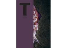 Grossiste alimentaire - Découvrez la revue T #2