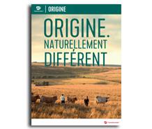 Grossiste alimentaire - Nouveau catalogue Transgourmet Origine
