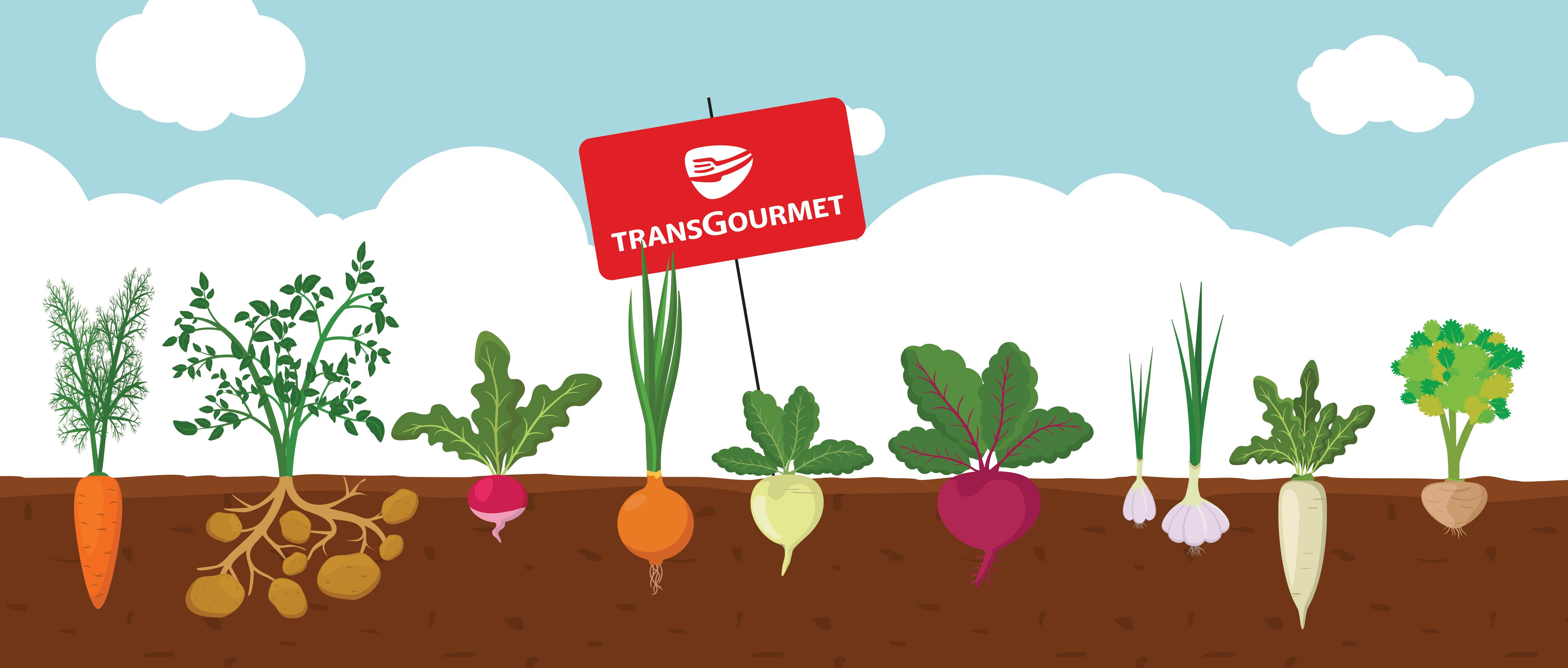 À Coulommiers, Transgourmet a la main verte !