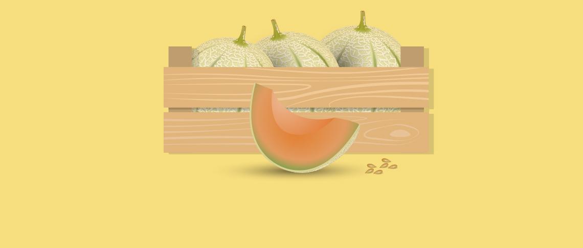 Le melon jaune charentais IGP du Haut-Poitou Transgourmet Origine obtient la certification HVE