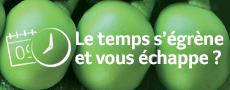 Découvrez Transgourmet Solutions - Grossiste alimentaire